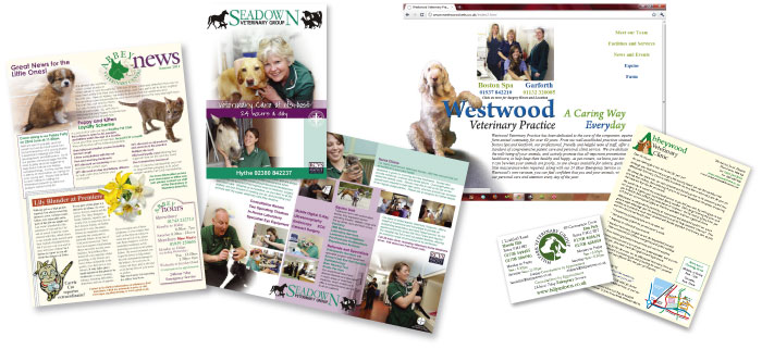 Veterinary Marketing Samples
